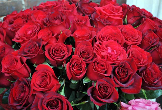 Записи цветы из кожи фото фото цветы