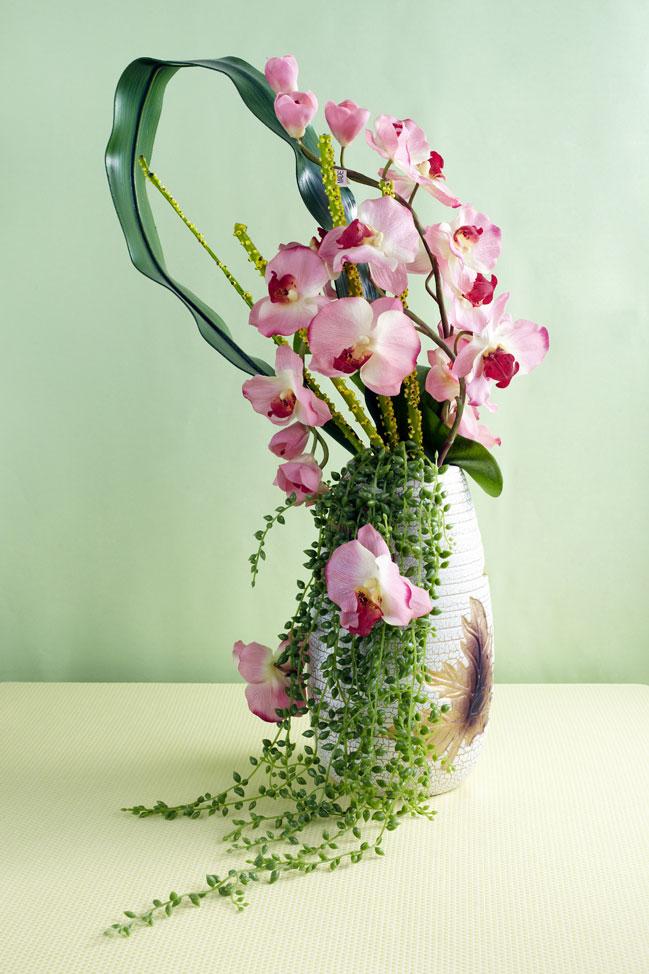 http://www.floridence.ru/assets/images/Articles/orchids_bukets/orchid_bouquet.jpg